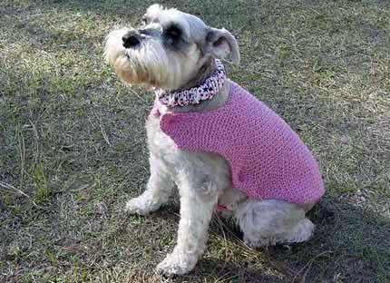 One Piece Dog Sweater Fancy Pink Wrap.