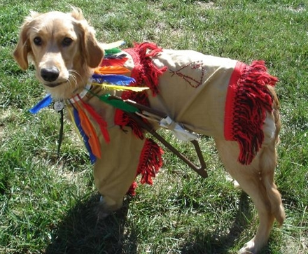 Dog Costume Indian